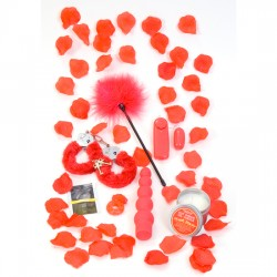 REGALO EROTICO SET RED ROMANCE DE TOYJOY